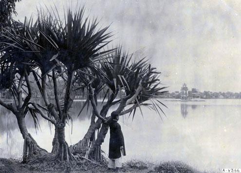 Lac de l'Epée restituée