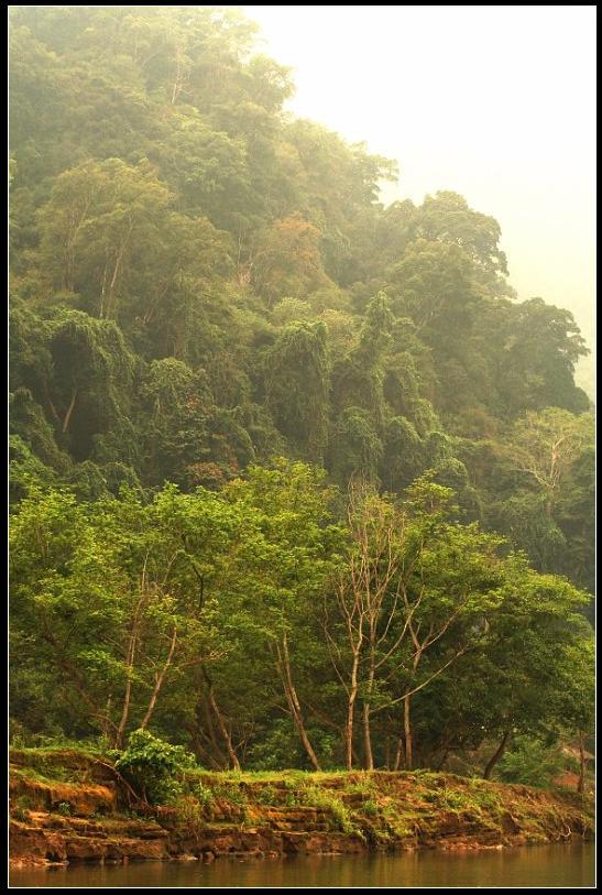 La jungle dans le parc national de Ba Be