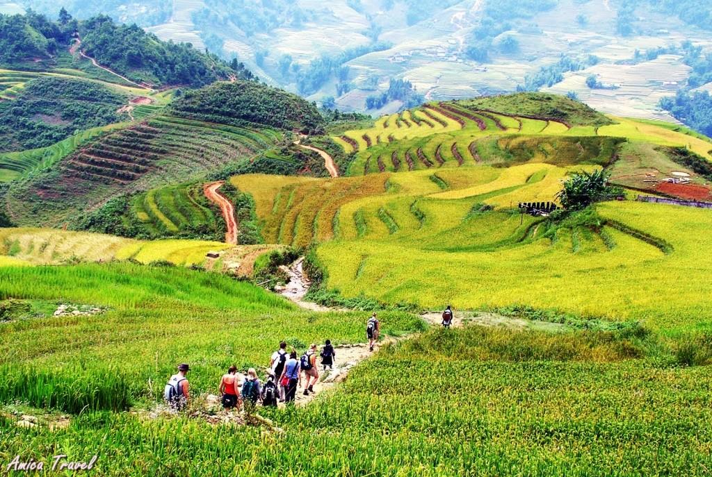 Trekking vers les villages à Sapa