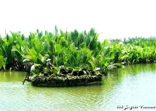 Ben Tre, capitale nationale de la noix de coco