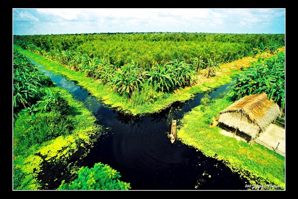 Parc national de Ca Mau