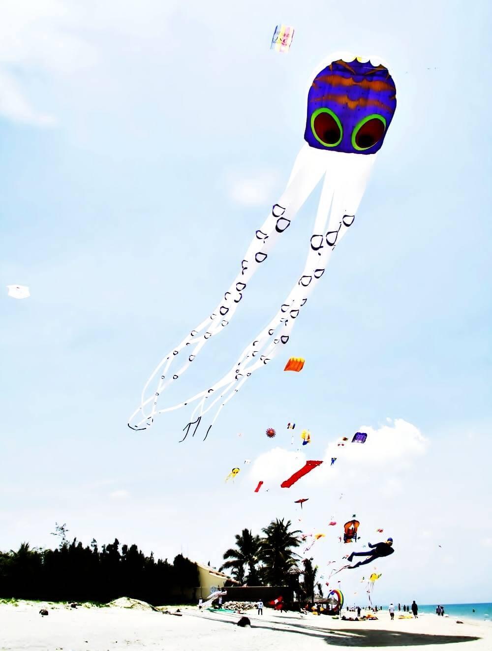 Septième festival international du cerf-volant à Quang Nam