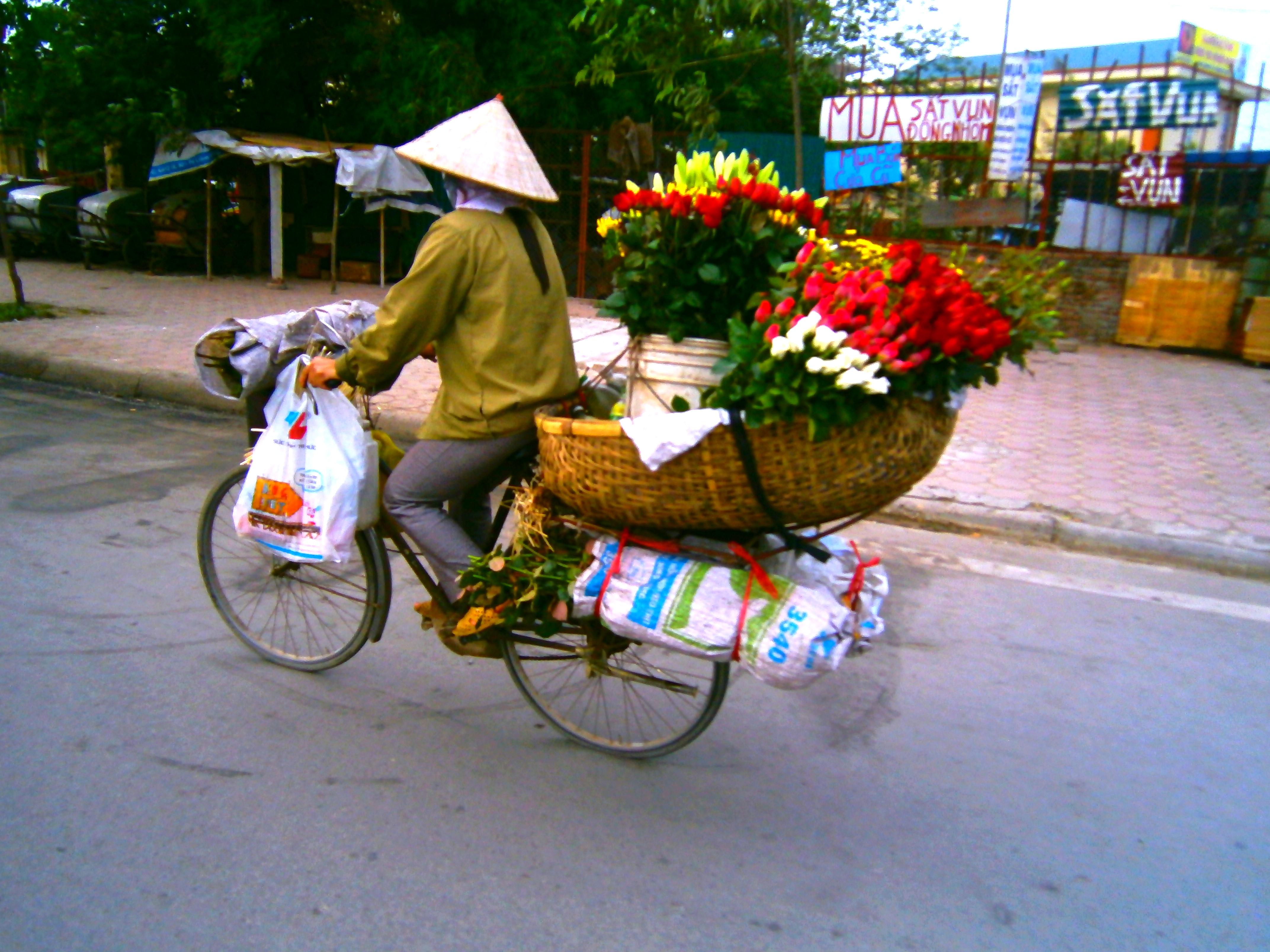 Transport au vietnam incroyable mais vrai suite for Fleuriste livreur