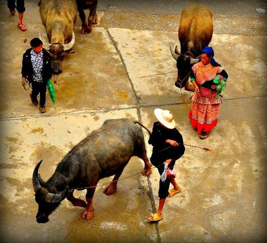 Un marché ethnique authentique de Bac Ha (Nord Vietnam)