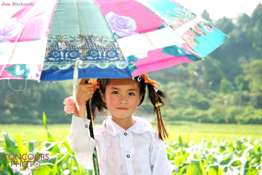24photo concours vietnam