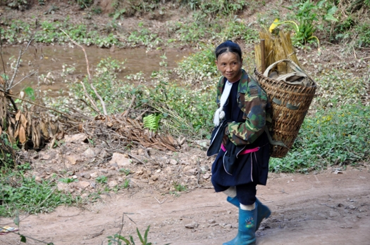 Femme laval