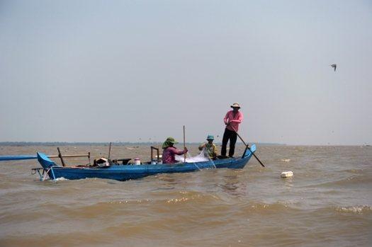 vie aquatique à phat sanday