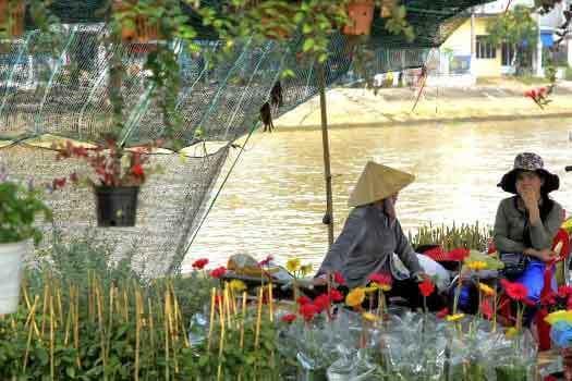 Village de fleur à Cho Lach Ben Tre Delta du Mékong