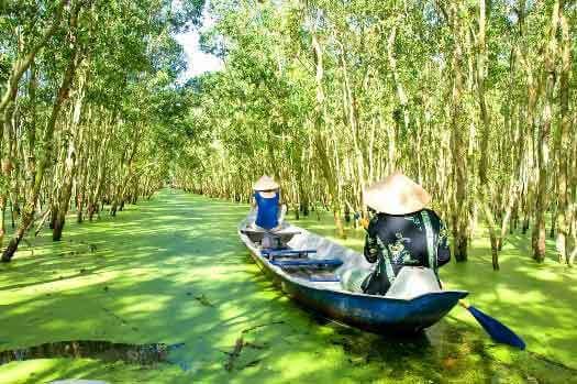 Forêt de cajeputiers de Tra Su