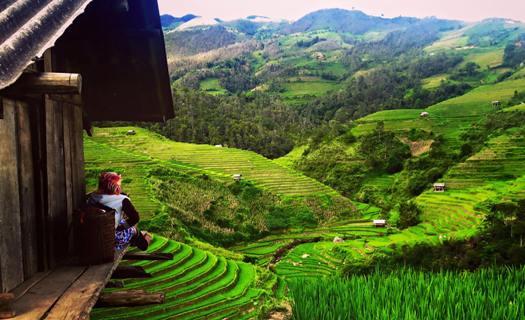 Rizières en terrasse à La Pan Tan, Mu Cang Chai, Nord Vietnam