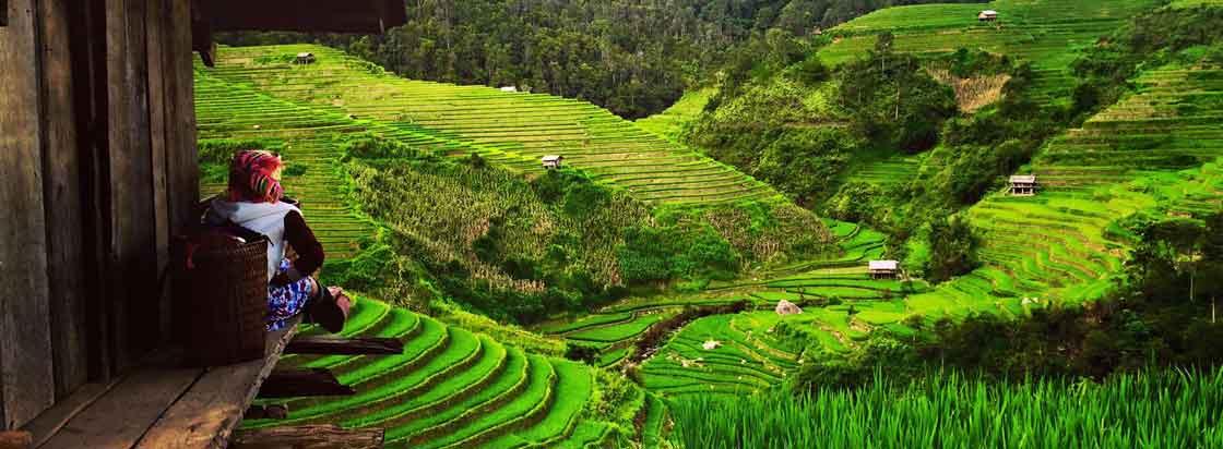 la pan tan nord du vietnam