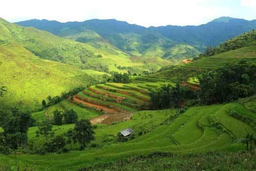 Rizières en terrasse à Bac Ha, Lao Cai