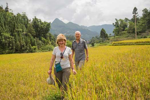 Balade au milieu des rizières