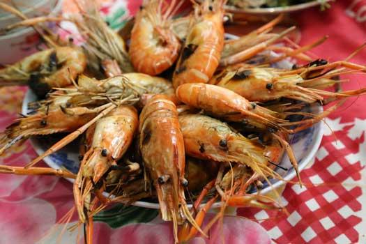 Déjeuner de fruits de mer avec vue sur mer