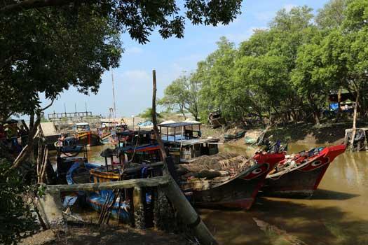 Immersion au villagedes pêcheurs