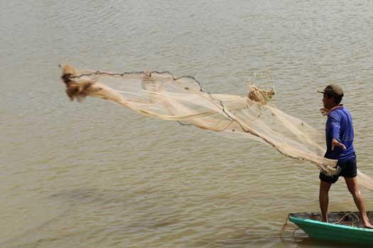 Pêcheur dans un arroyo de Soc Trang
