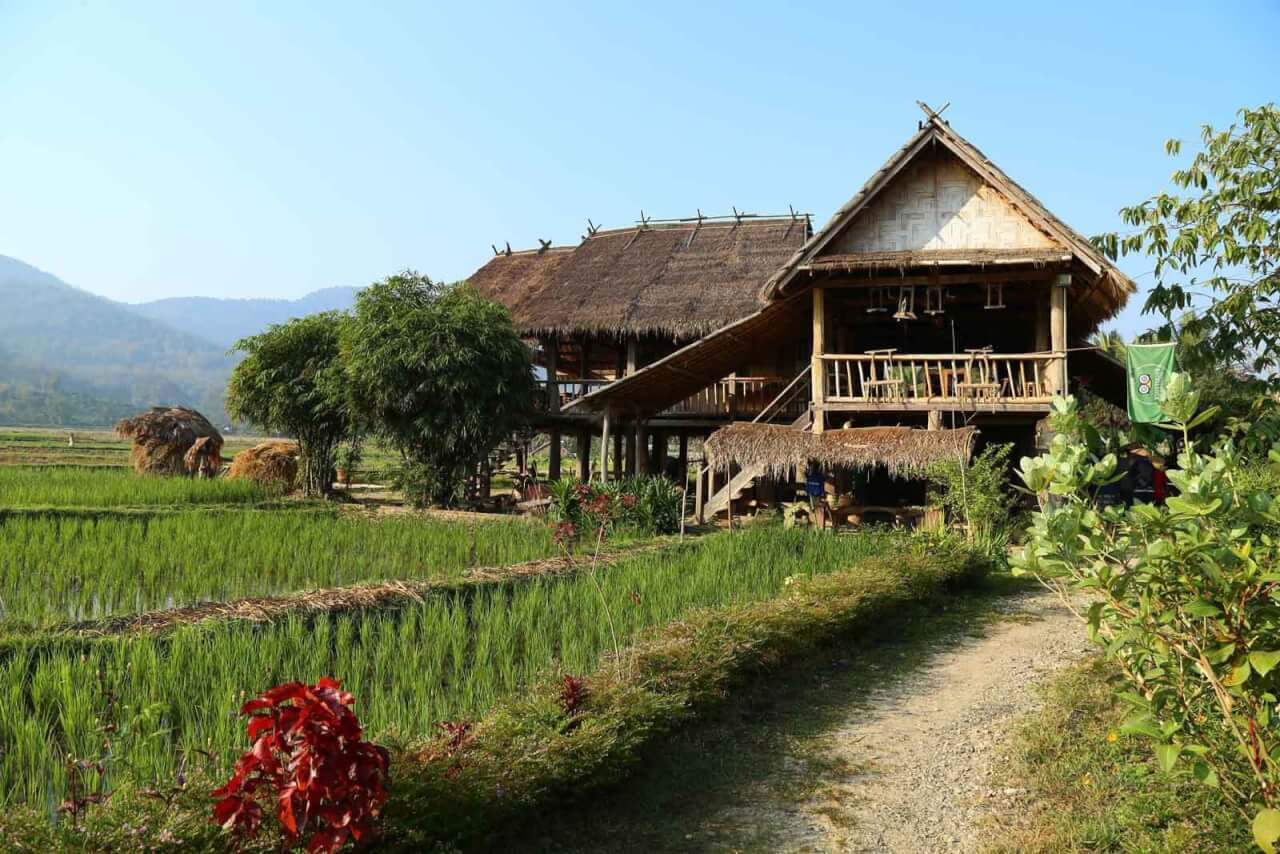 ferme-organique-living-land-laos