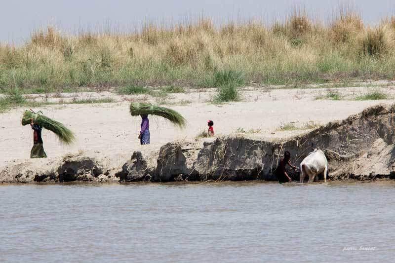 Fleuve Irrawady