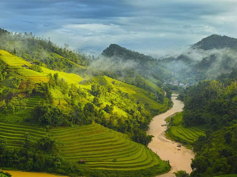 rizieres en terrasse hoang su phi ha giang