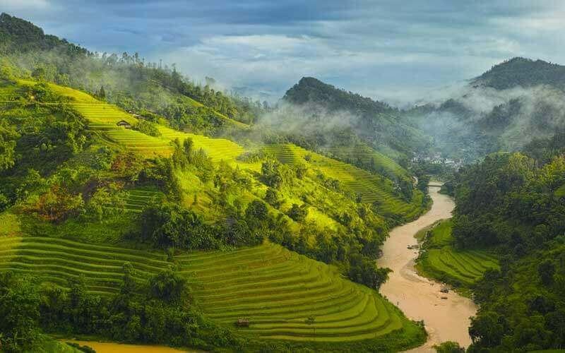 Rizière en terrasse, Ha Giang, Nord Vietnam